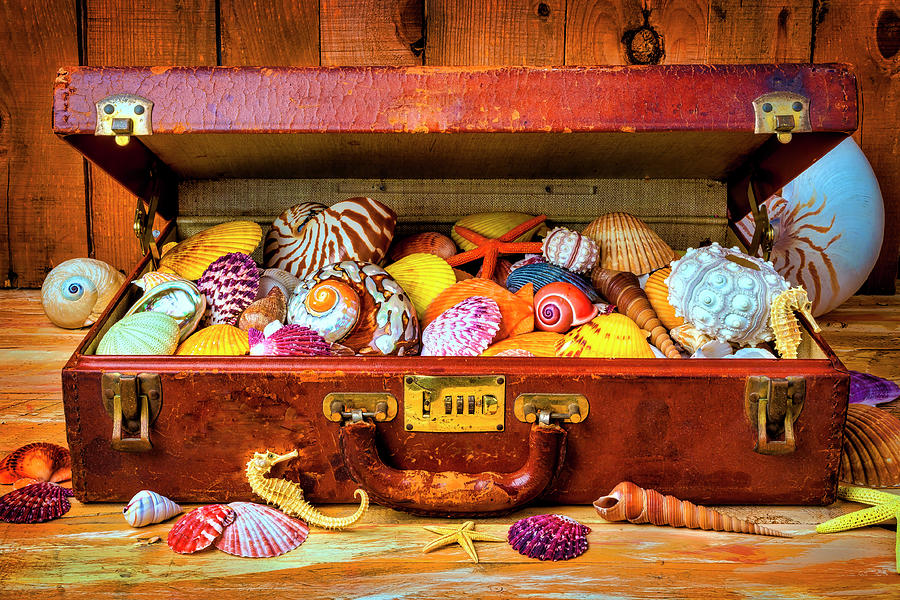 Old Suitcase With Seashells by Garry Gay