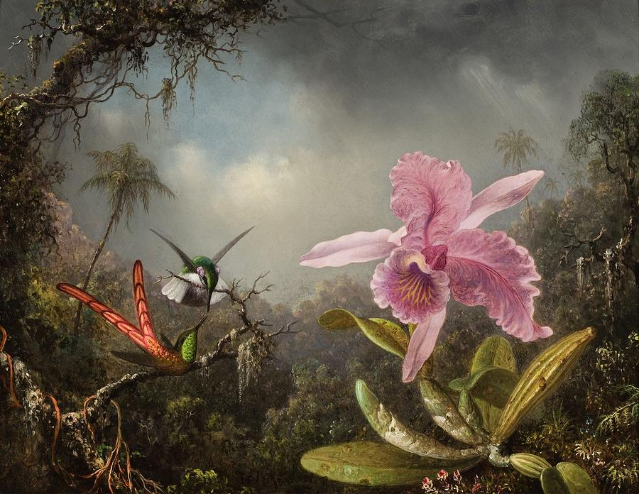Martin Johnson Heade Painting - Orchid With Two Hummingbirds  by MotionAge Designs