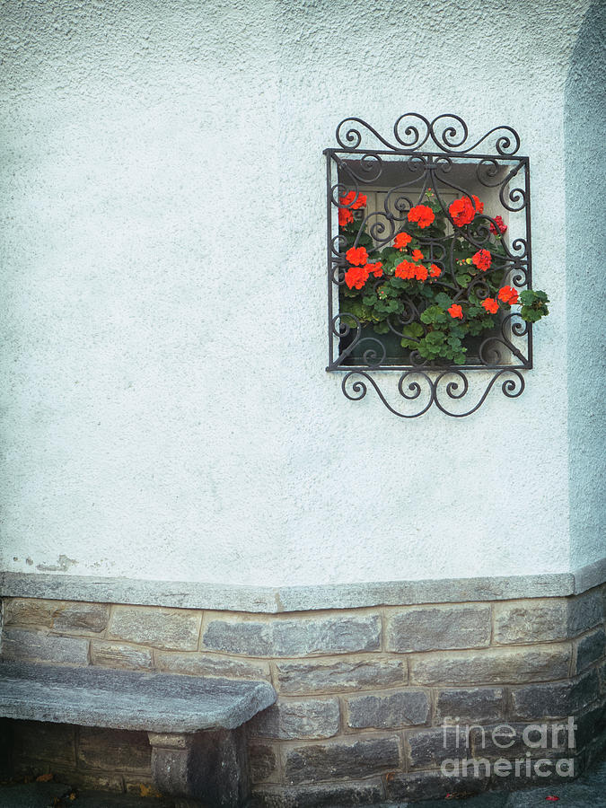 Ornate window with geraniums by Silvia Ganora