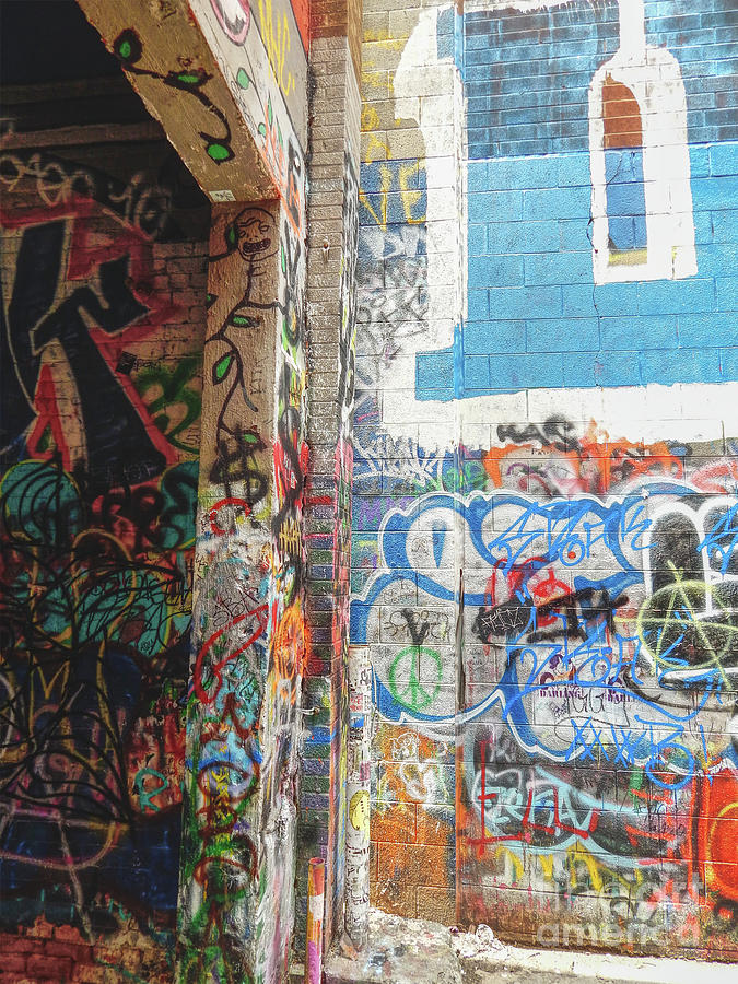 Graffiti Photograph - Painted Alley by Phil Perkins
