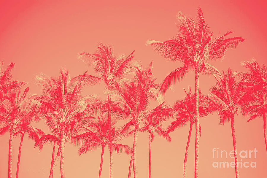 Palms in Living Harmony by Sharon Mau
