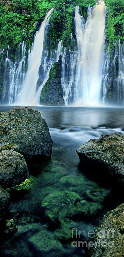 panorama burney falls mcarthur burney state park calif by Dave Welling