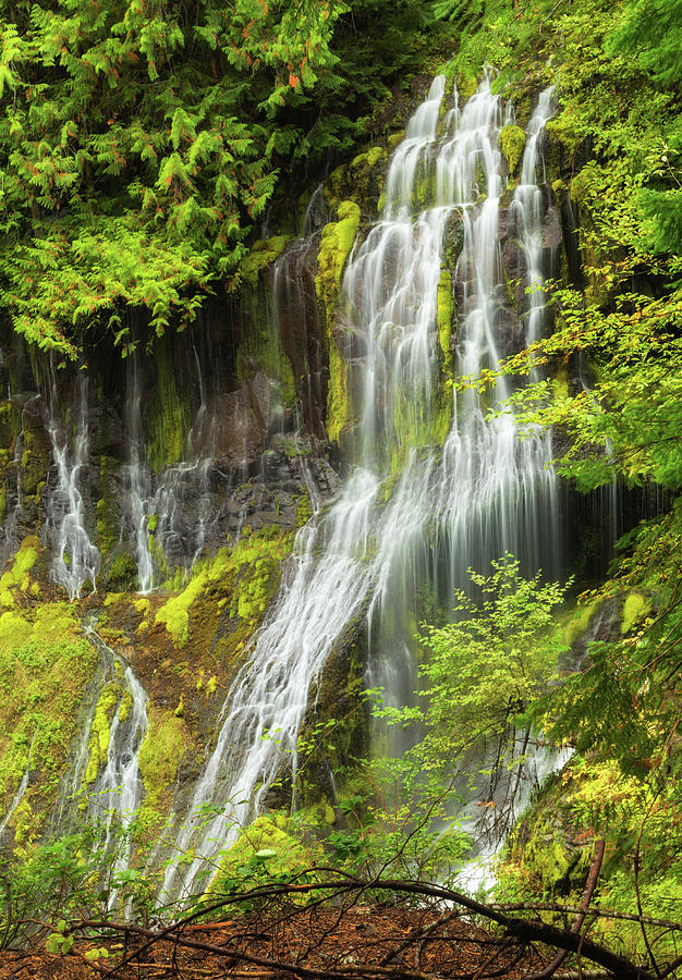 Panther Creek Falls by Angie Vogel