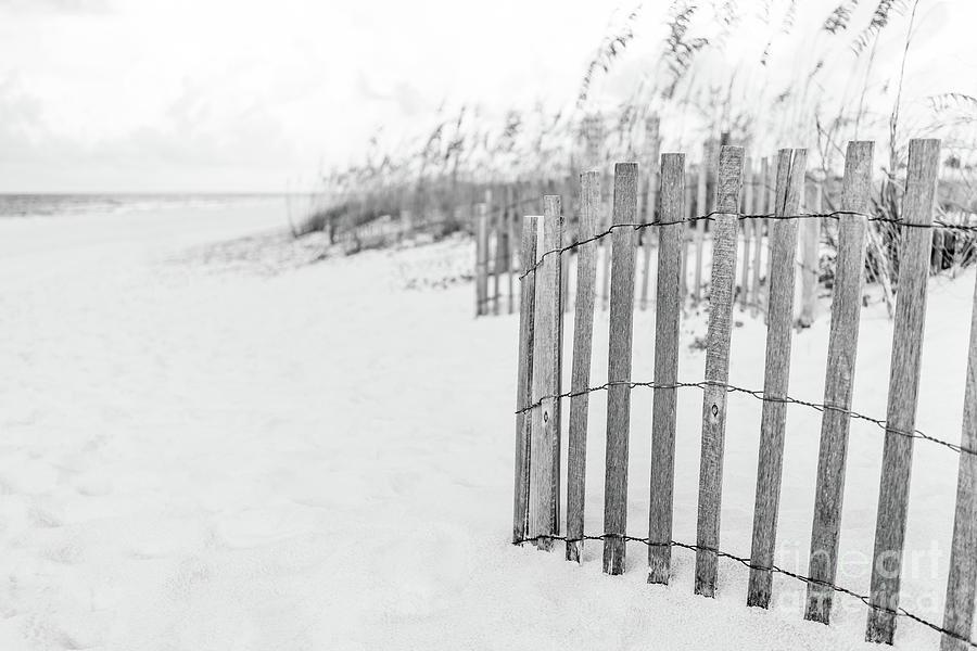 America Photograph - Pensacola Florida Beach Fence Black And White Photo by Paul Velgos