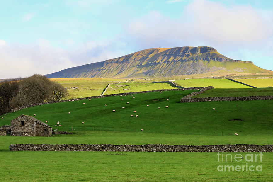 Pen Y Ghent Photograph - Penyghent In Yorkshire Dales National Park North Yorkshire by Louise Heusinkveld