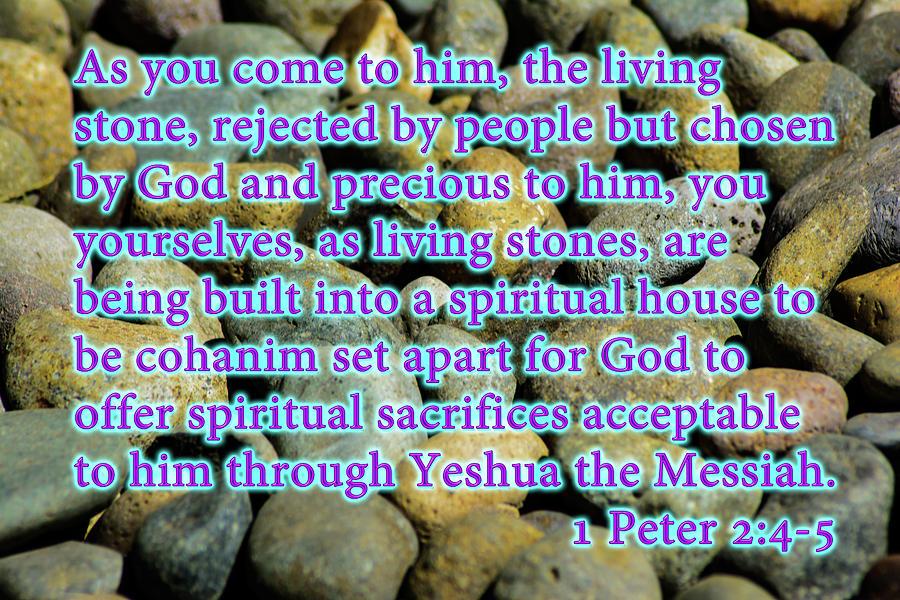 1 Peter 2_4-5 by Tikvah's Hope