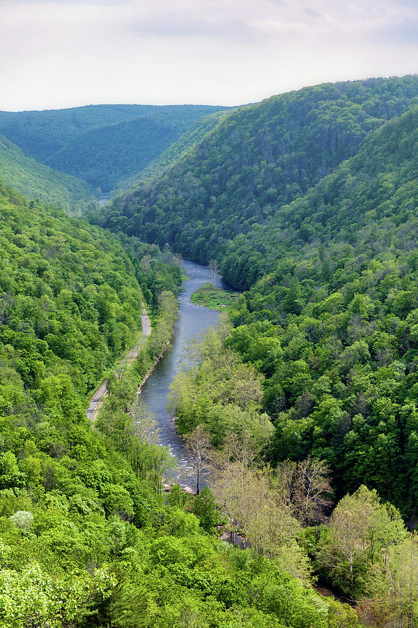 Pine Creek Gorge by David Oakill