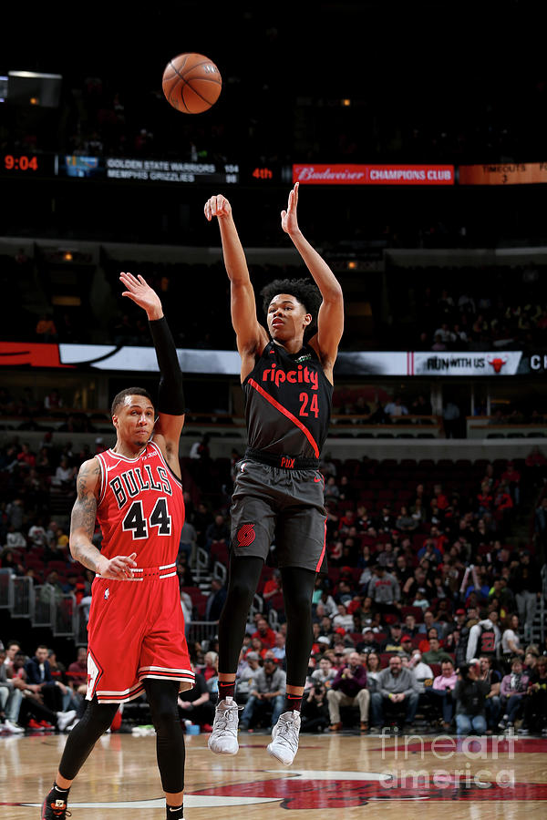 Portland Trail Blazers V Chicago Bulls Photograph by Gary Dineen