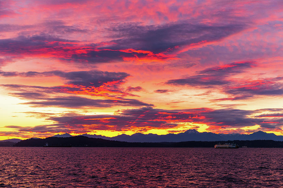 Puget Sound from Alki Beach by Michael Lee