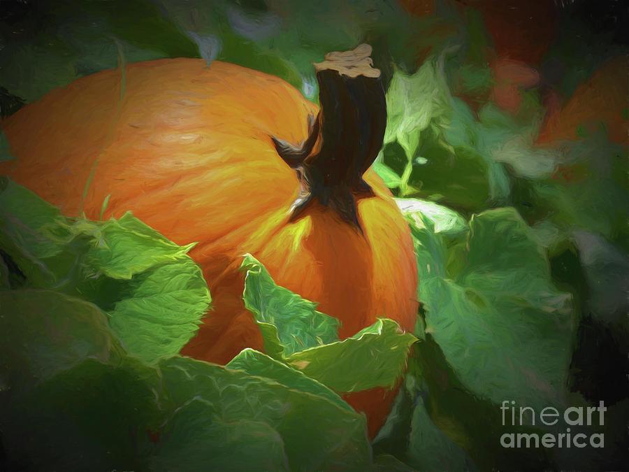 Pumpkin Season by Robin Zygelman