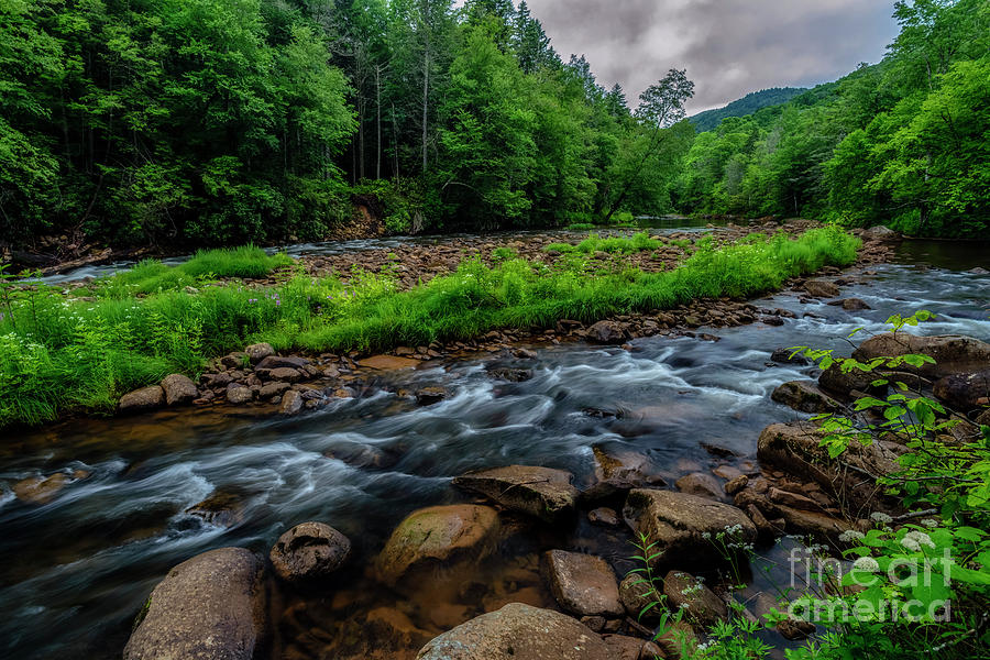 Rainy Day Williams River by Thomas R Fletcher