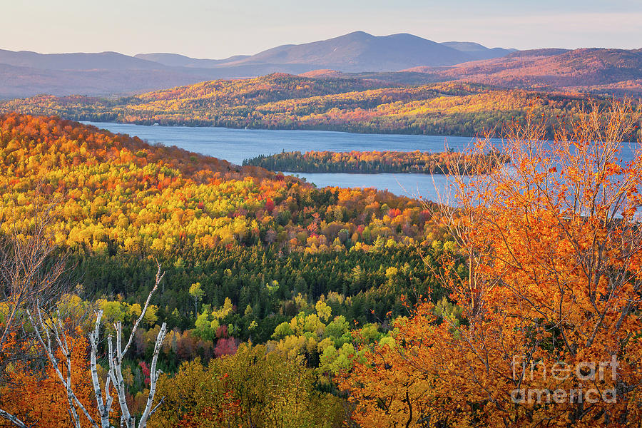 Rangeley Lake Fall by Susan Cole Kelly