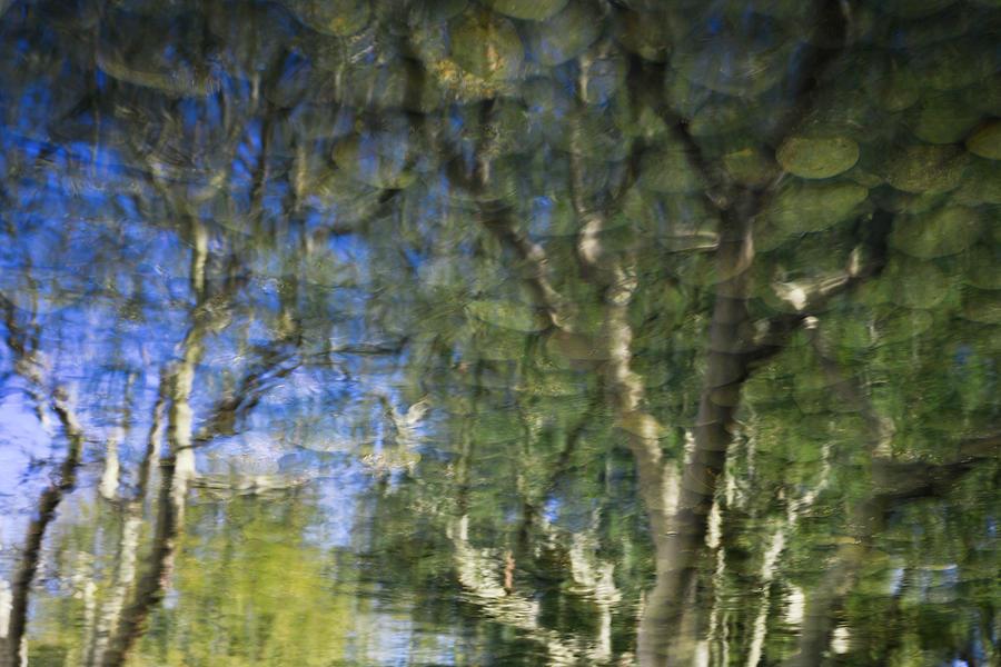 Reflecting by Jay Heifetz