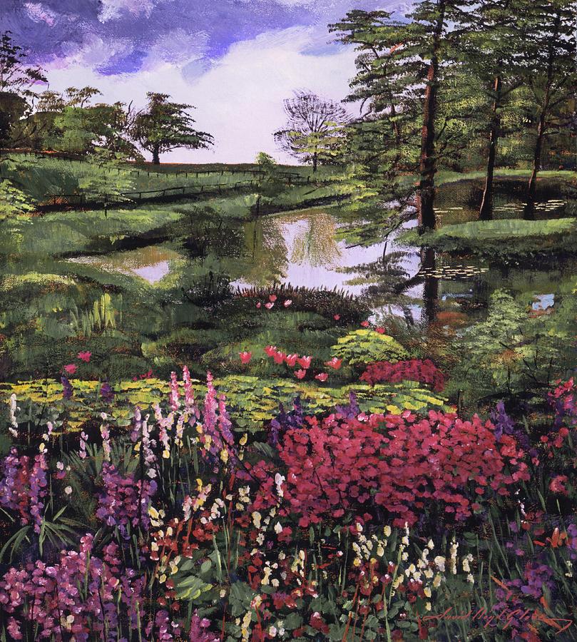 REFLECTING POND by David Lloyd Glover