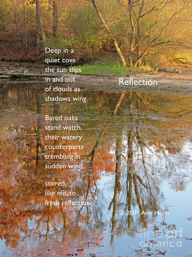 Reflection by Ann Horn