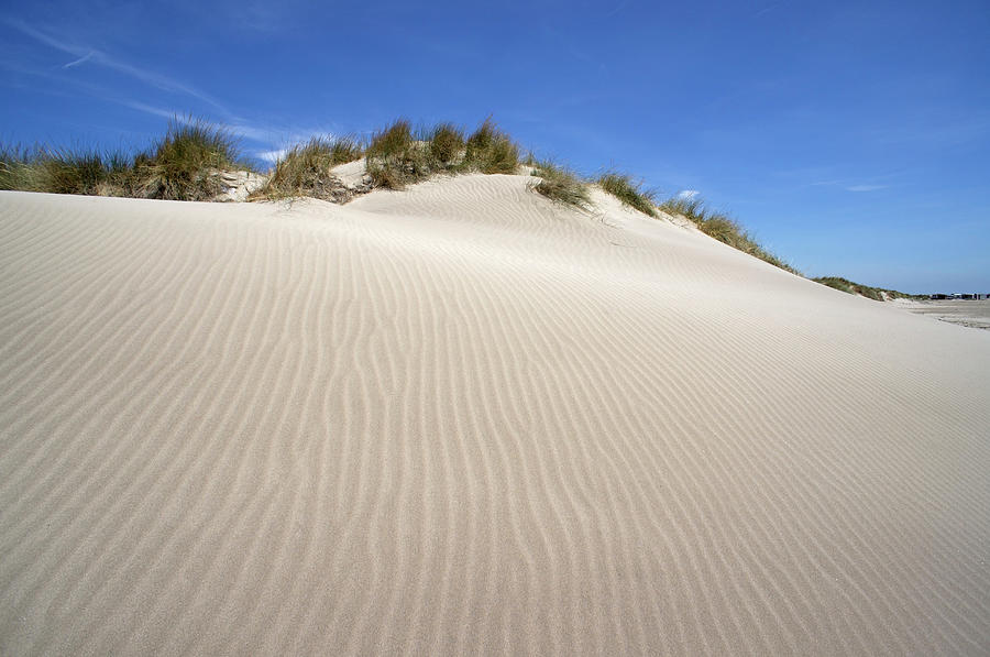 Ripples In Sand Dune Photograph by Sami Sarkis
