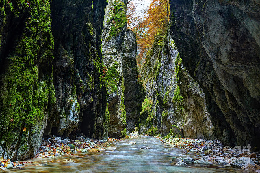 River in limestone canyon by Catalin Petolea