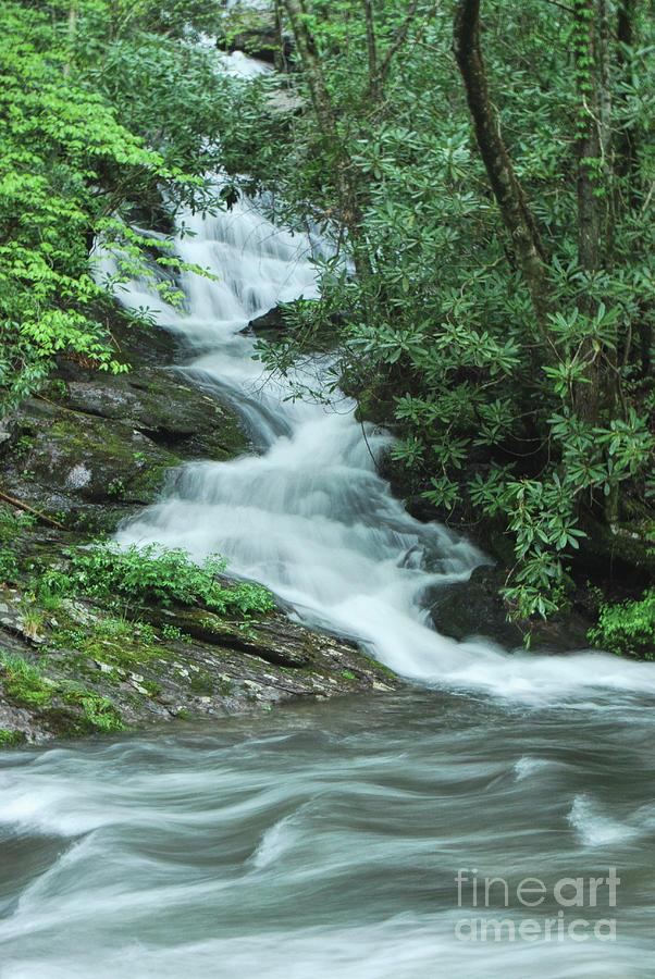 Roadside Waterfall by Phil Perkins