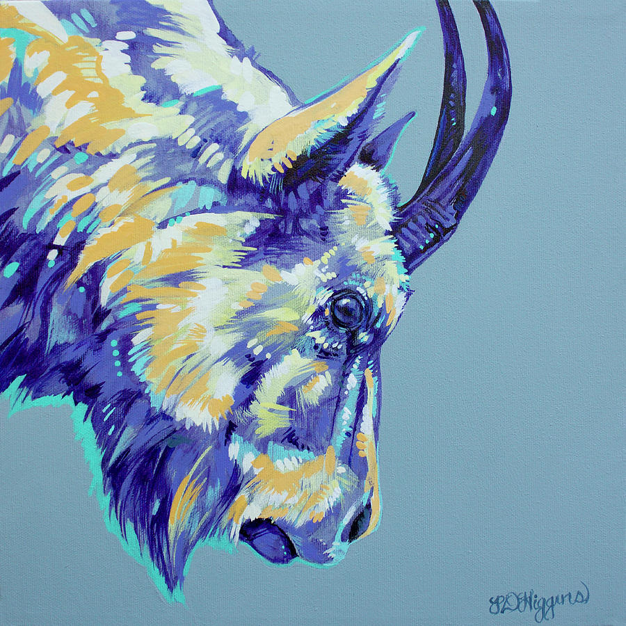 Rocky Mountain Goat by Derrick Higgins