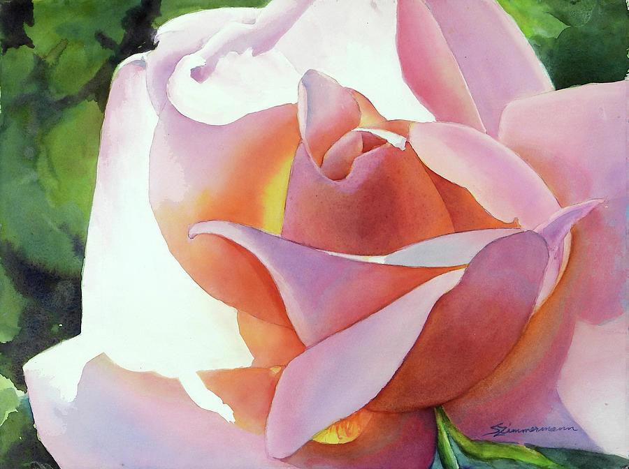 Rose by Sue Zimmermann