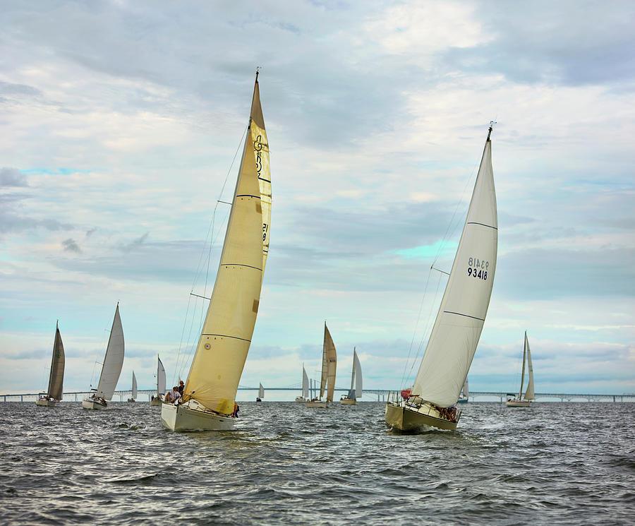 Sail Boats Racing, Chesapeake Bay Photograph by Greg Pease