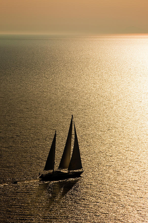 Sailing At Sunset Photograph by Mbbirdy