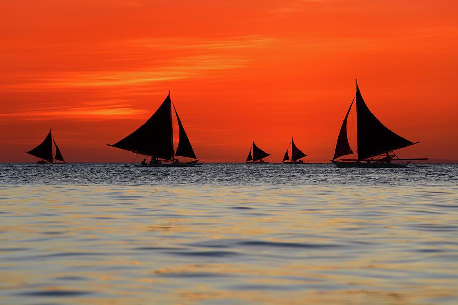 Sailing Sunset Photograph by Vuk8691