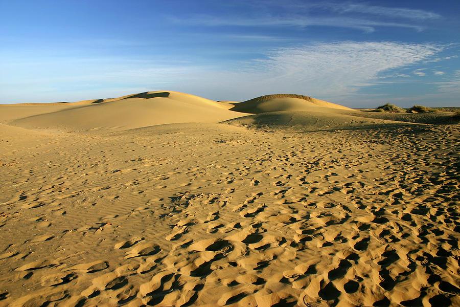 Sand Dunes Photograph by Bremecr