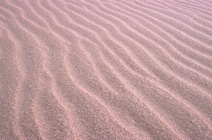 Sand Ripples Photograph by John Foxx