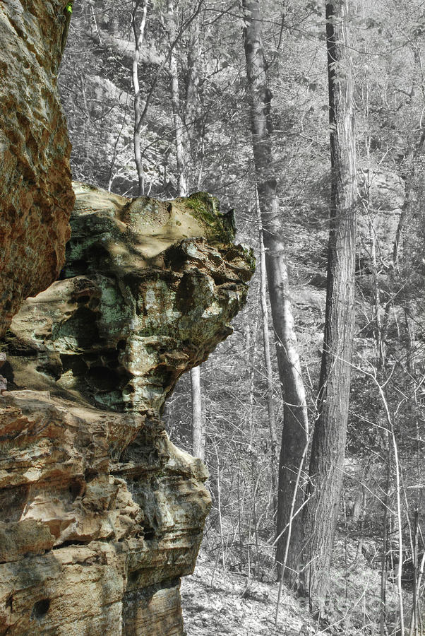 Sandstone Outcropping by Phil Perkins