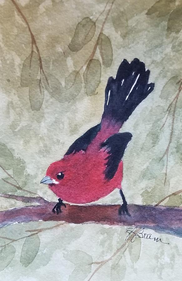 Scarlet Tanager by Elise Boam