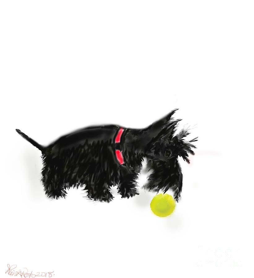 Scottish Terrier  by REINA RESTO