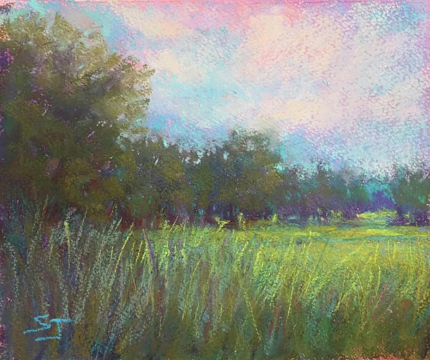 Secret Meadow by Susan Jenkins