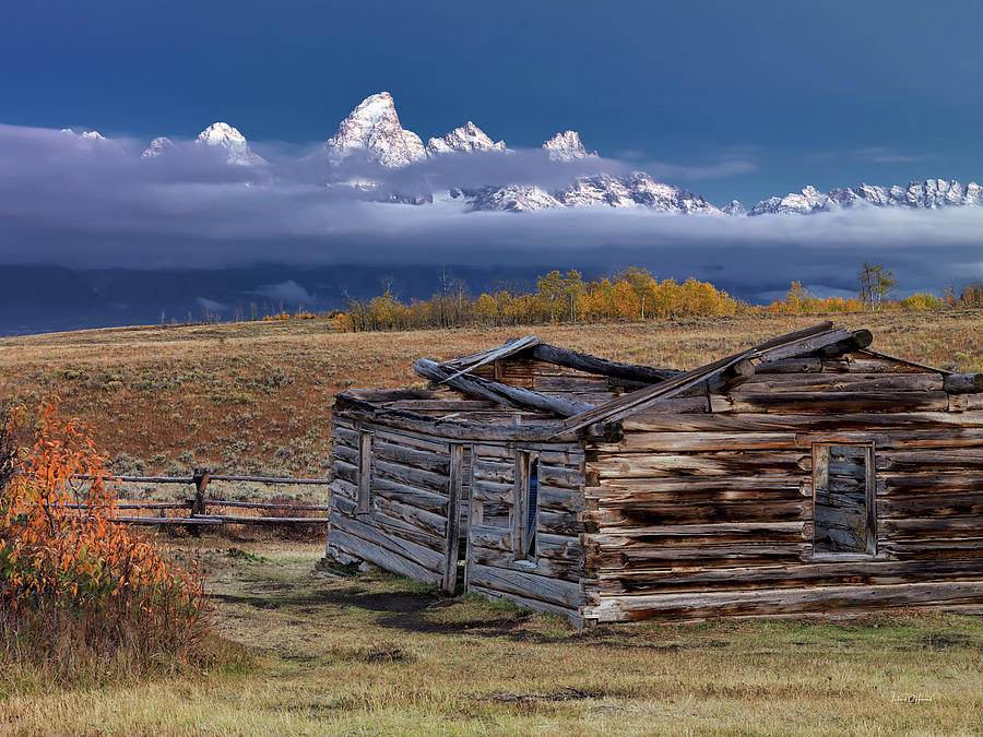 Nature Photograph - Shane Cabin  by Leland D Howard