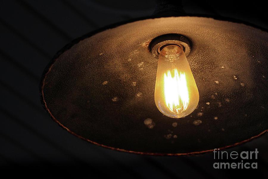 Shine by Karen Adams