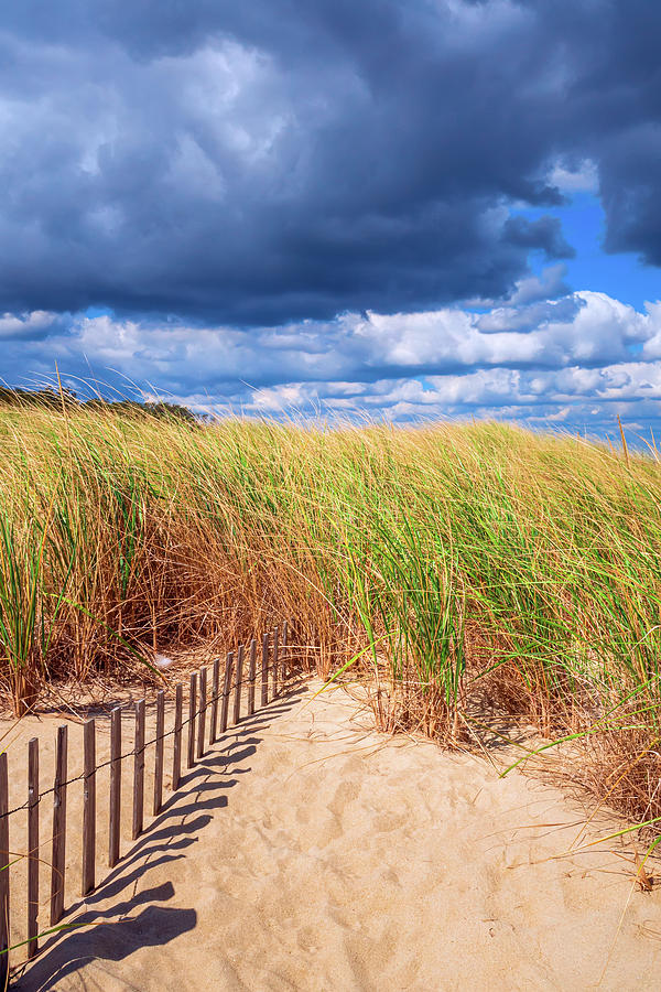 Sinking Fence Path To Dune Grass On Cloudy Day by Gary Slawsky