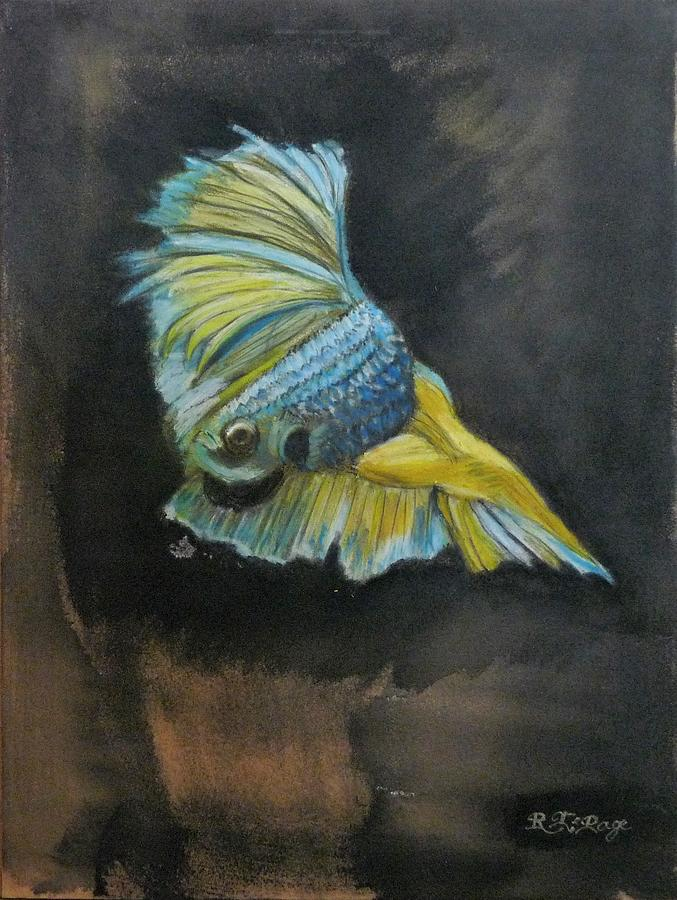 Siamese Fighting Fish 4 by Richard Le Page