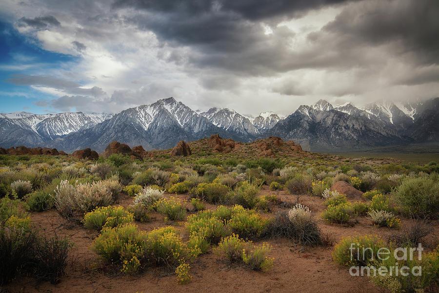 Sierra Nevada Mountain Range by Michael Ver Sprill