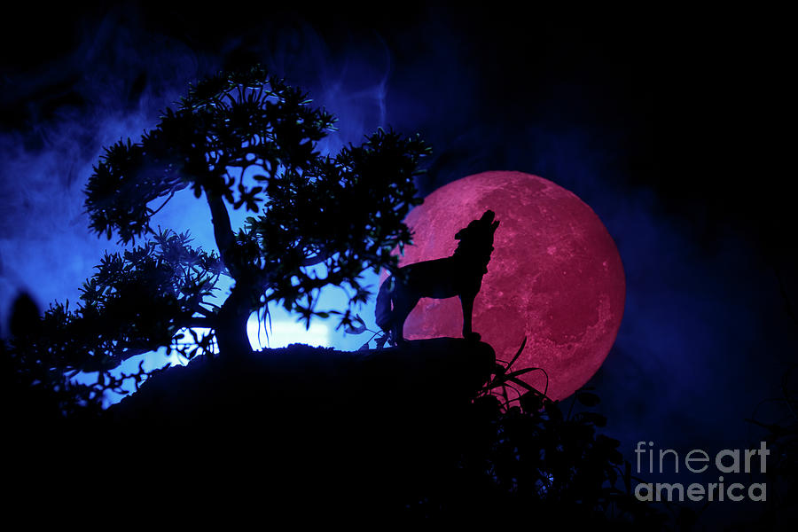 Silhouette Of Howling Wolf Against Dark Photograph by Zeferli