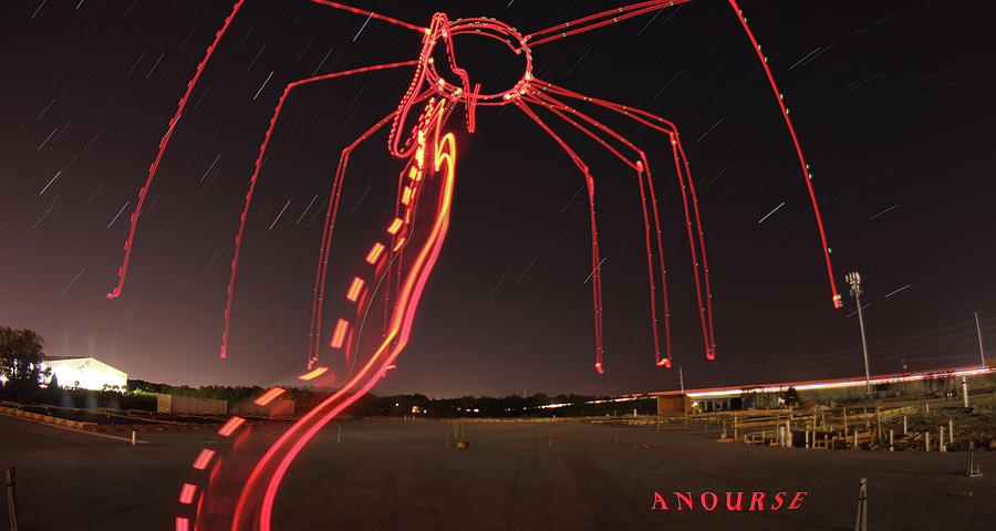 Sky Spider by Andrew Nourse