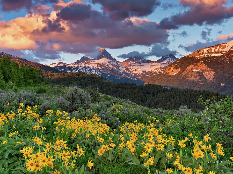 Altitude Photograph - Spring Sunset In The Tetons by Leland D Howard