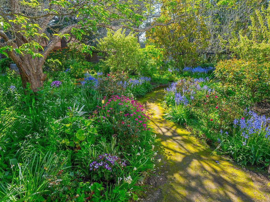 Stevenson Garden by Derek Dean