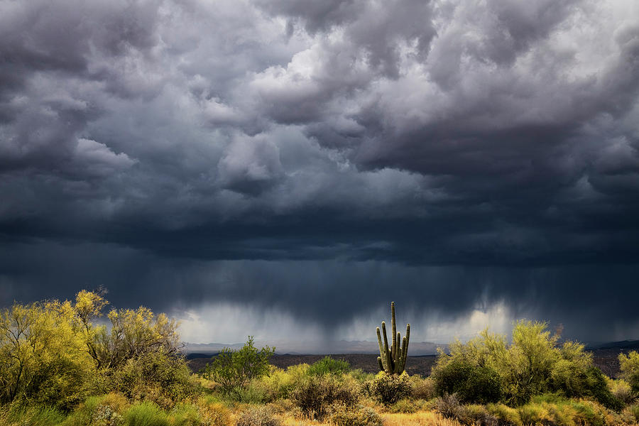 Stormy Arizona Skies  by Saija Lehtonen