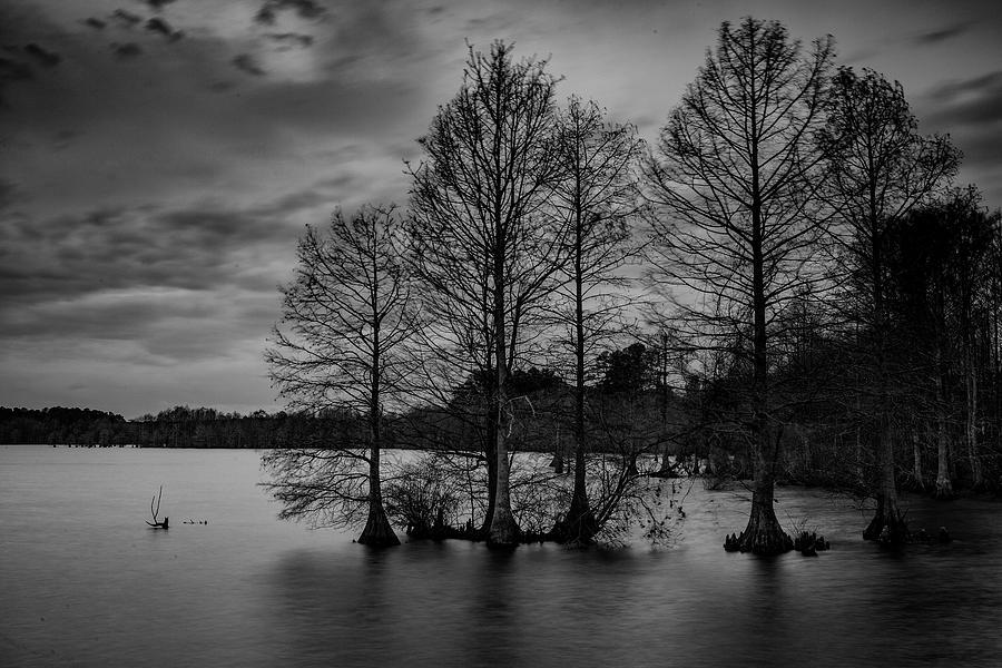 Stumpy Lake by Pete Federico