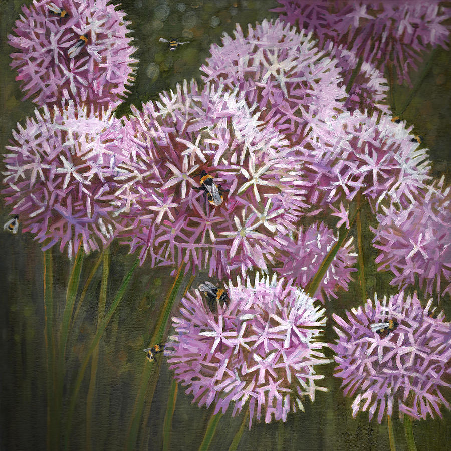 Aliums Painting - Summer Bees by Helen White