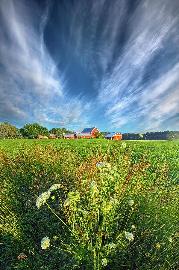 Life Photograph - Summer Dreams Drifting Away by Phil Koch