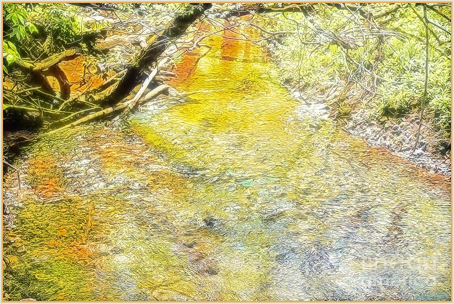 Sunlight on the Water by Mindy Newman