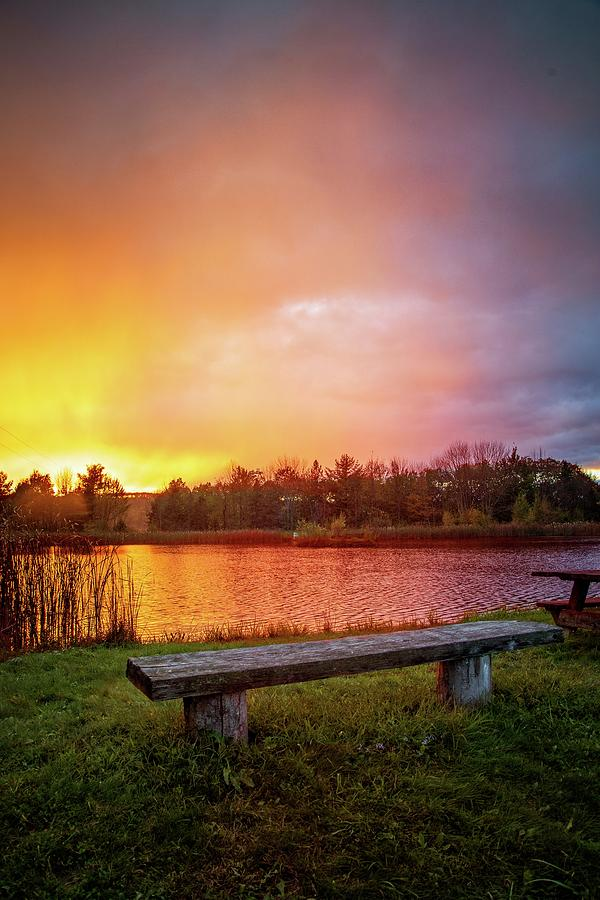 Sunset at the Pond by Lynn Bauer