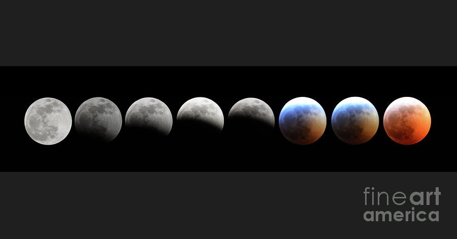 Super Blood Wolf Moon by Charles Owens