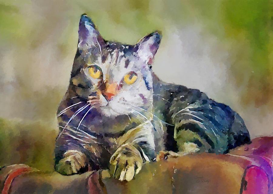 Tabby Cat Portrait 2 by Sandi OReilly